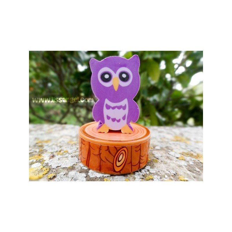 Pack eraser and sharpener OWLS colors