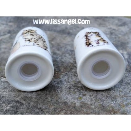 Salt and Pepper Shakers Cats design