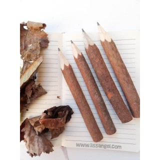 Natural Branch Pencil