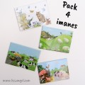 Pack 4 Imanes Animales Bonitos